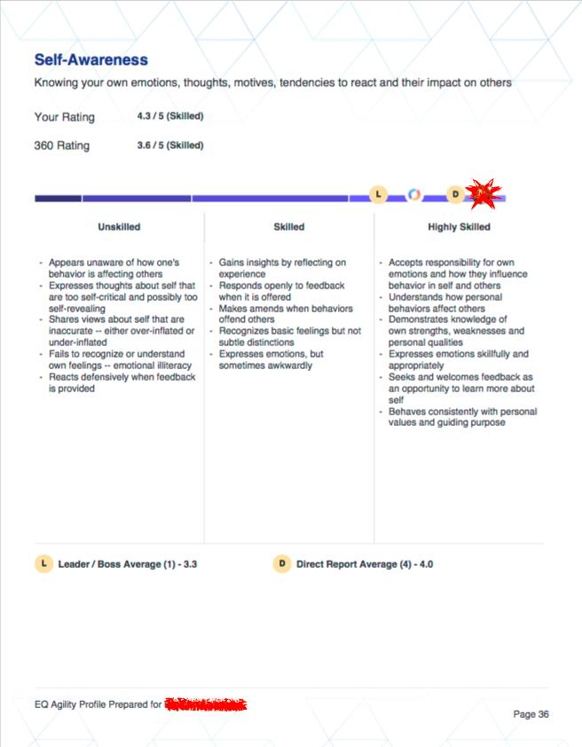 360 PDF Report Sample-Categories